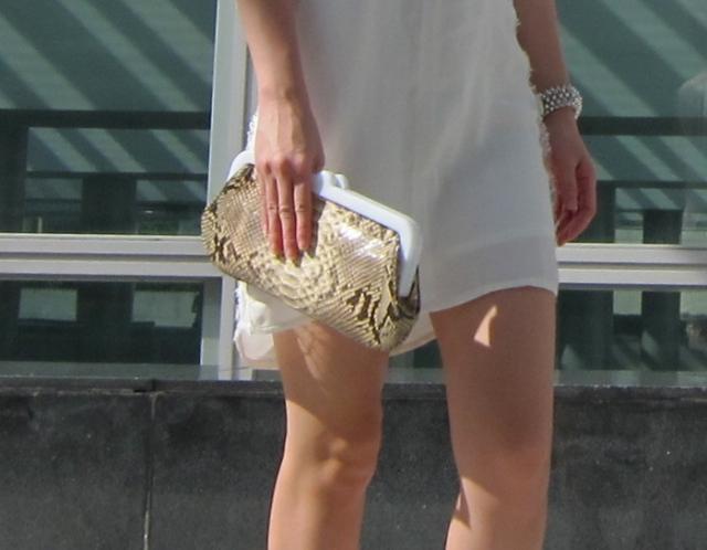snake skin clutch
